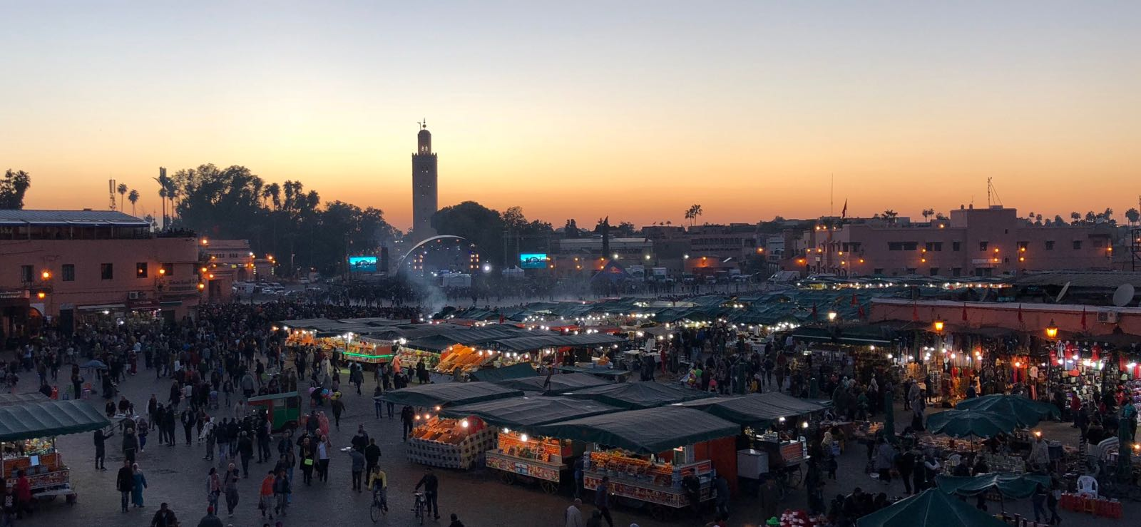 Marrakesh Essential Information